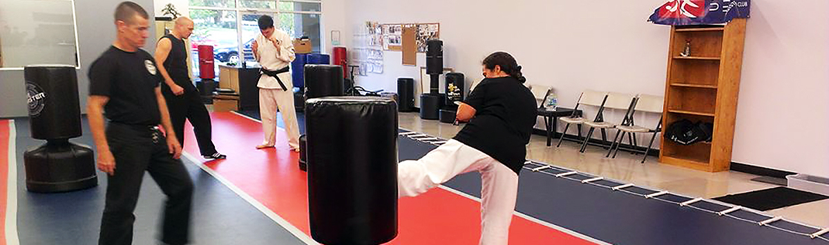 Permalink to: Kickboxing for Fitness